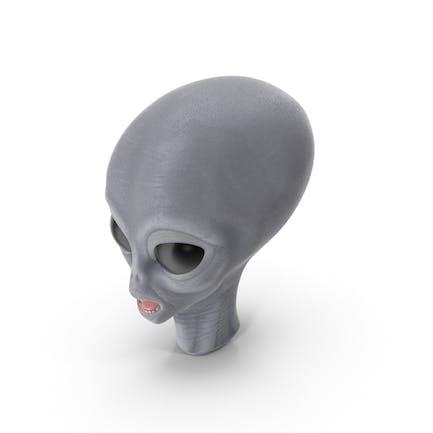 Alien Leiter
