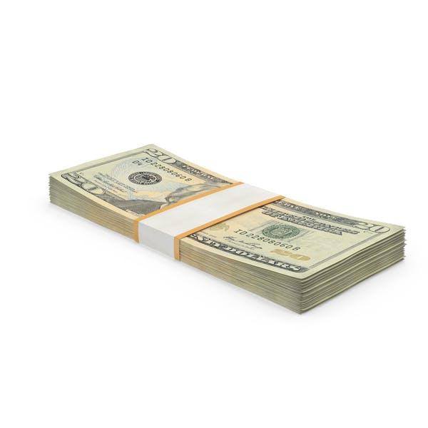 Thumbnail for 20 Dollar Bill Pack