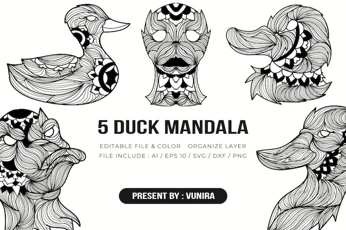 Thumbnail for 5 Duck Mandala | Design Illustration