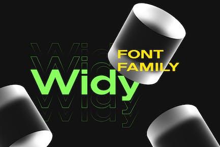 Семейство шрифтов Widy
