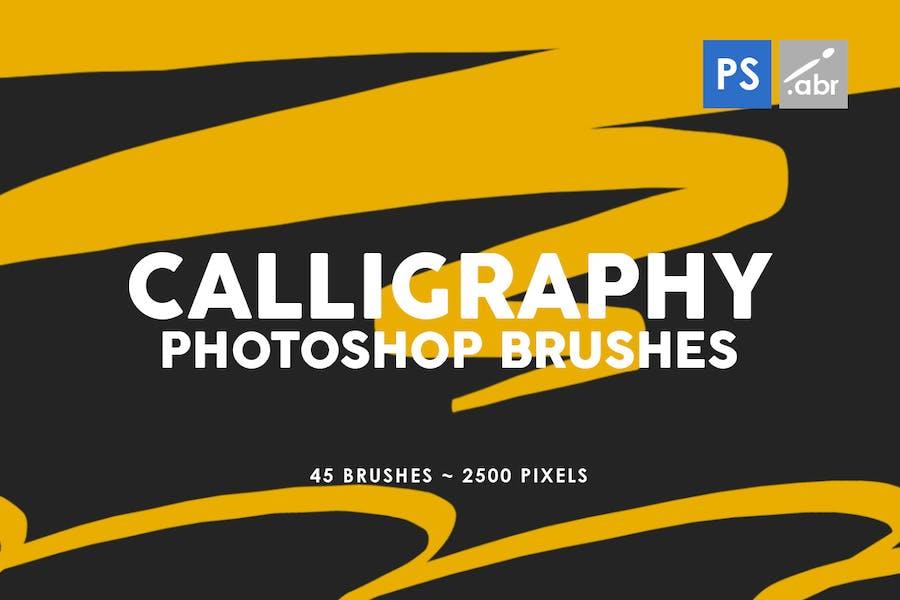 45 Calligraphy Photoshop Stamp Brushes
