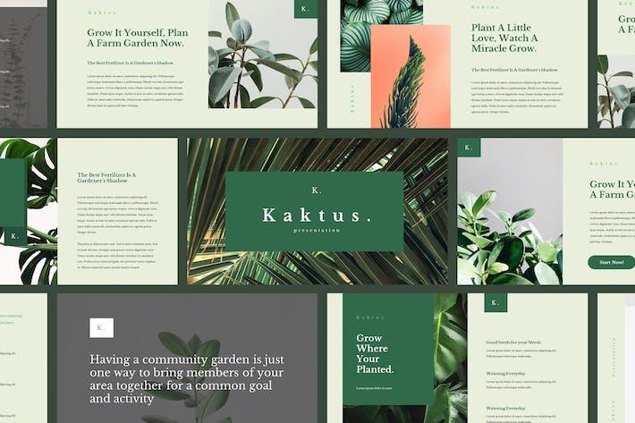 Kaktus - Elegant Keynote Template