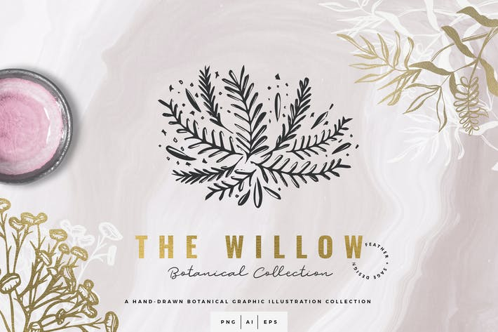 Thumbnail for The Willow Graphic Colleción