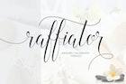 Raffiator Script