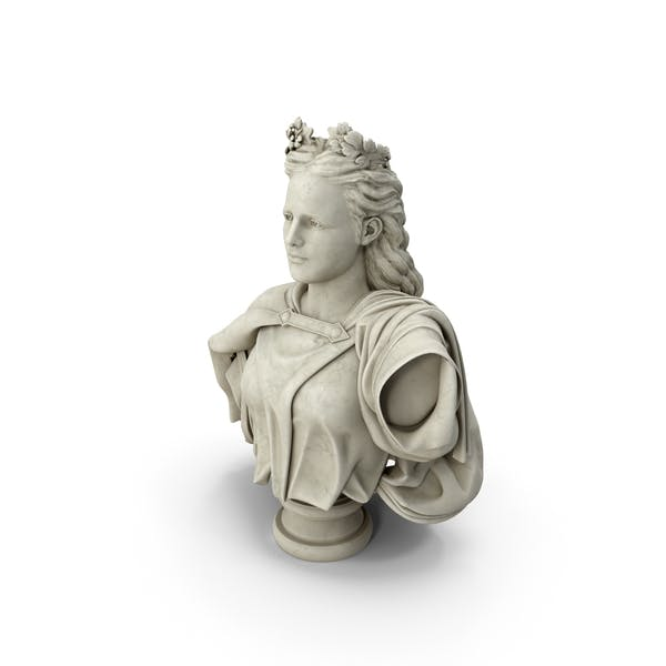 Neoclassical Bust