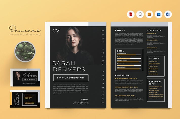 Creative CV Resume & Name Card PSD, DOCX, AI No.29
