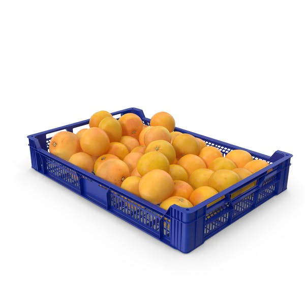 Plastic Tray With Grapefruits
