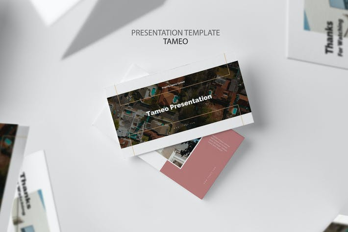 Tameo : Property Agent Google Slides