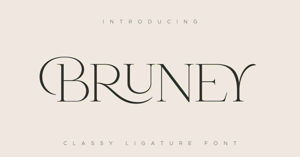 Download Bruney - Classy Ligature Font by HamzStudio