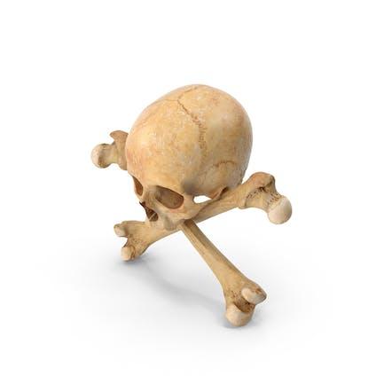 Piraten-Schädel und Knochen