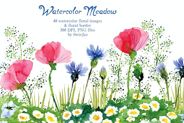 Thumbnail for Hand Painted Watercolor Meadow Flowers