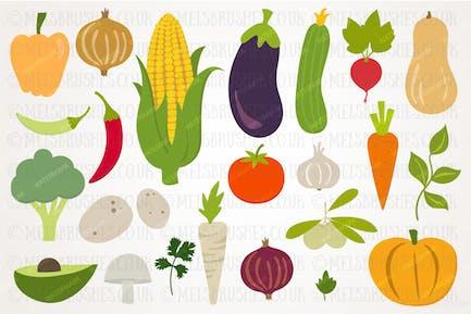 Herbsternte Gemüse Illustration Set