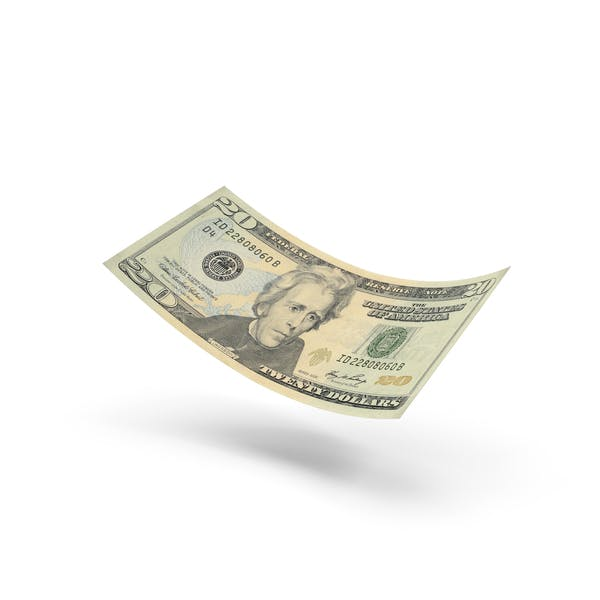 Cover Image for US 20 Dollar Bill