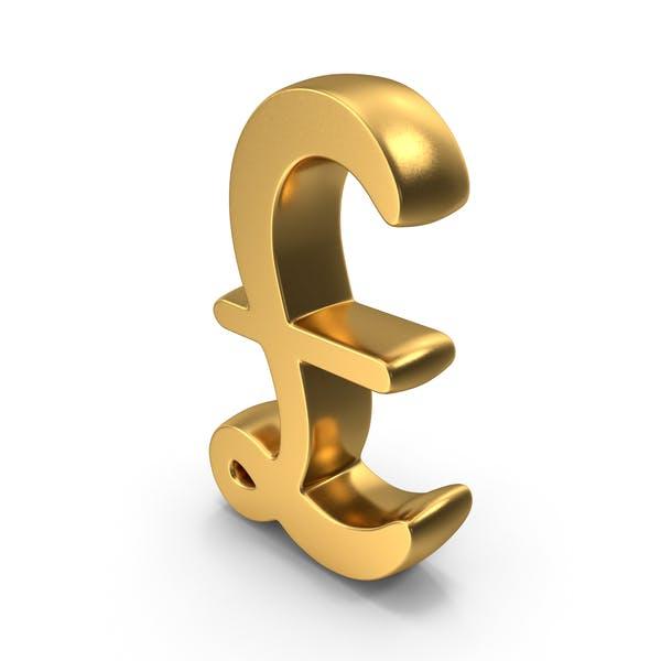 Pound Logo Icon