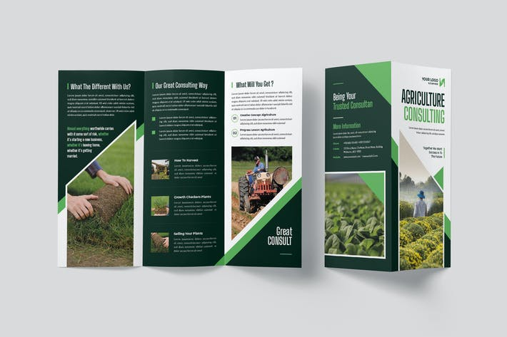 Agriculture Consulting Trifold Brochure