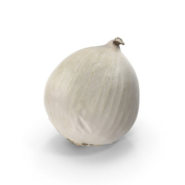 Cover Image for White Onion