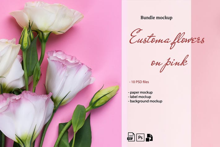 Eustoma flowers on pink. Mockup set
