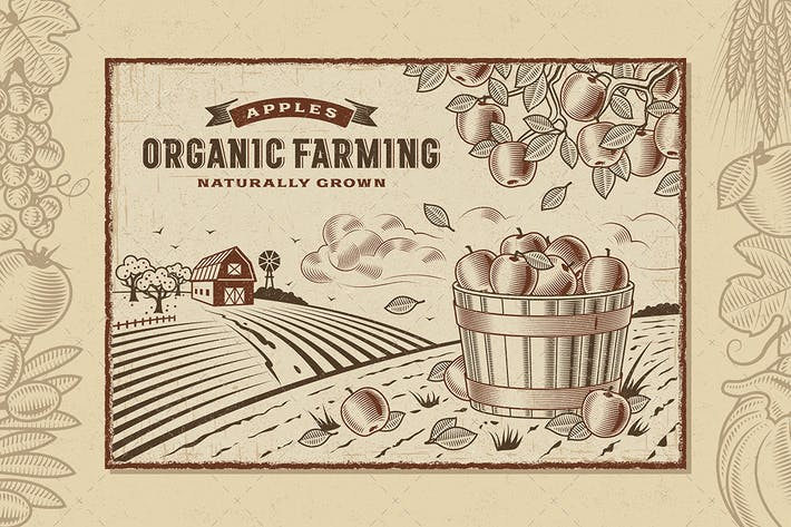 Thumbnail for Apple Organic Farming Landscape