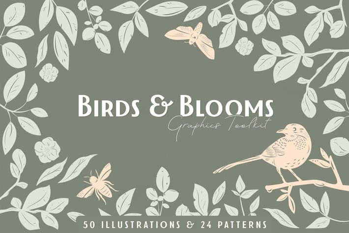 Cover Image For Birds & Blooms Graphics Toolkit