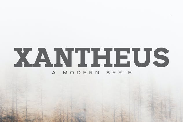 Xantheus Serif Font Family - product preview 0