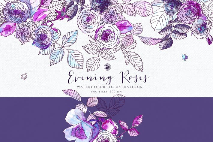 Cover Image For Evening Roses