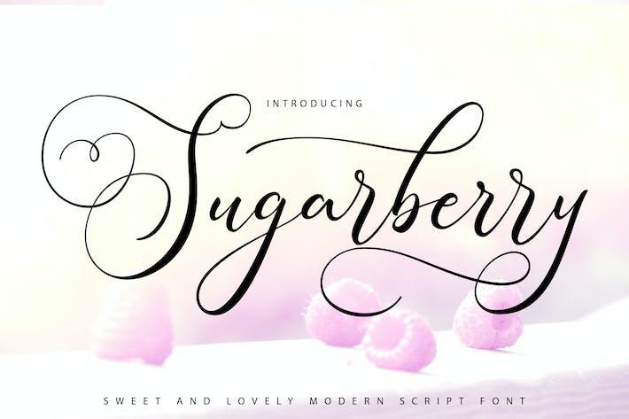 Thumbnail for Sugarberry | Fuente de escritura moderna
