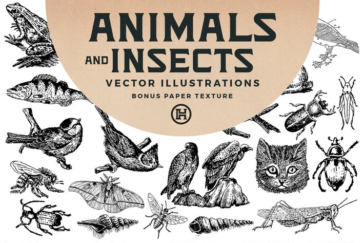 Thumbnail for Animals and Insects Vectors