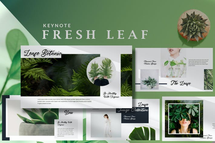 Thumbnail for Minimal Fresh Leaf - Nature Keynote Template