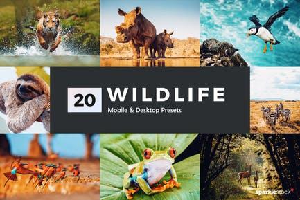 20 Wildlife Lightroom Presets and LUTs