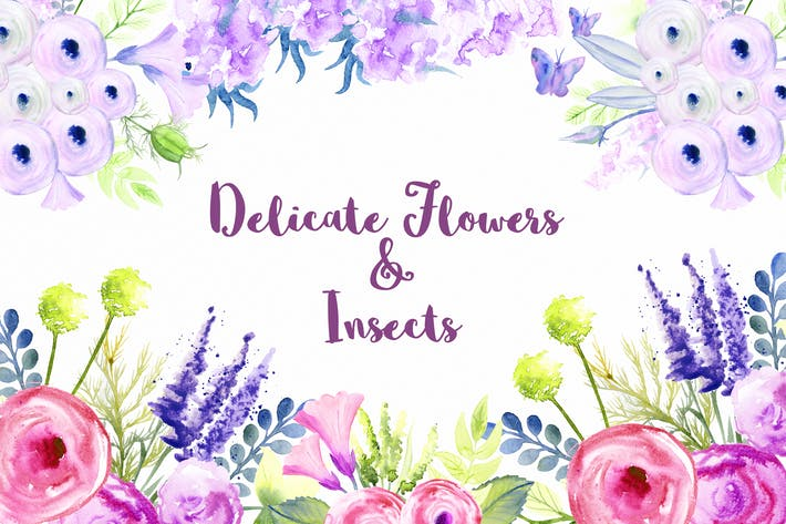 Thumbnail for Delicate Flowers & Insects