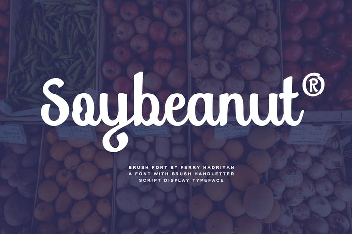 Thumbnail for Soybeanut - Brush Script Font