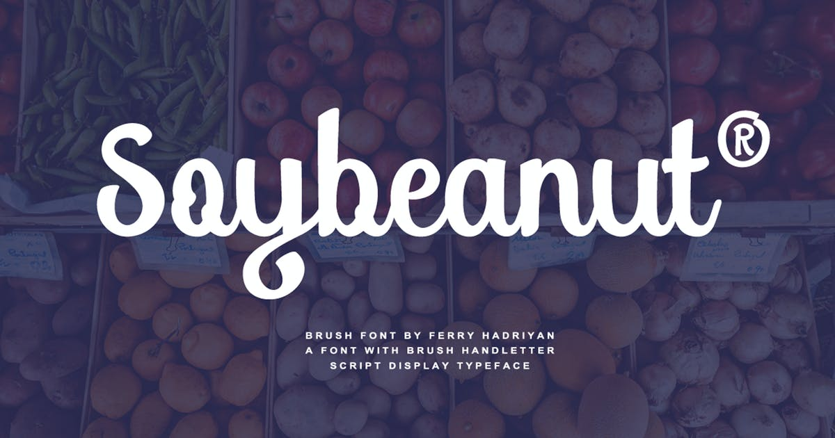 Download Soybeanut - Brush Script Font by Voltury