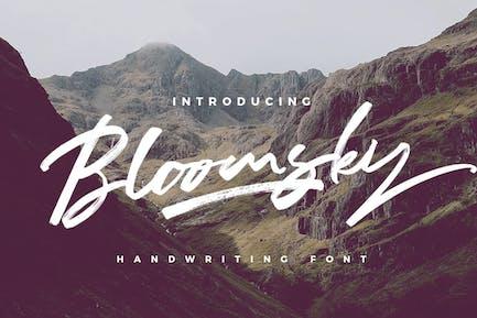 Bloomsky - Signature Logotype Brush