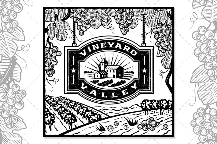 Thumbnail for Vineyard Valley Black And White