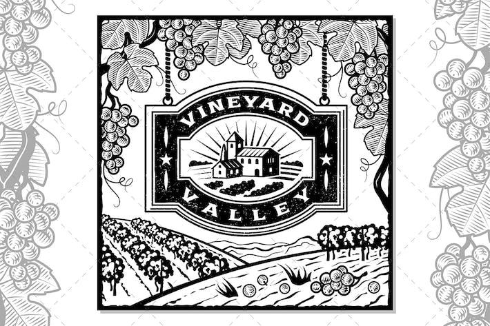 Vineyard Valley Schwarz Und Weiß