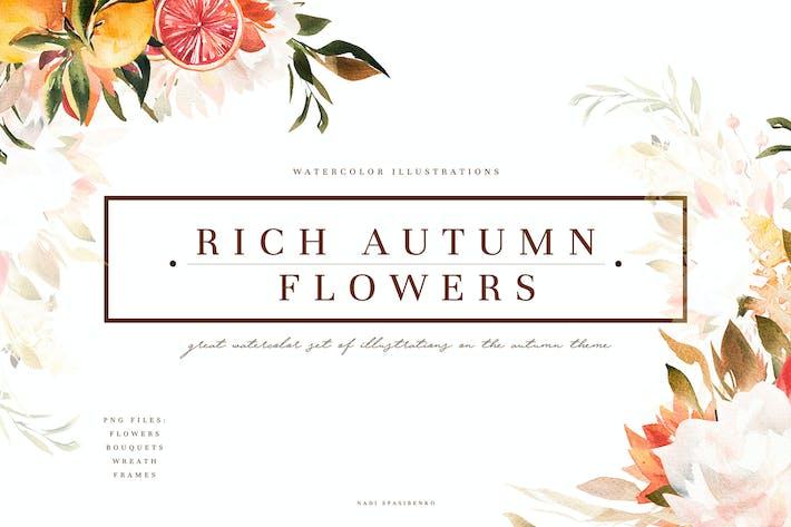 Thumbnail for Rich Autumn Flowers