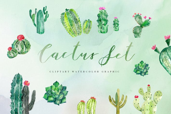 Thumbnail for 15 Watercolor Cactus Set Illustration