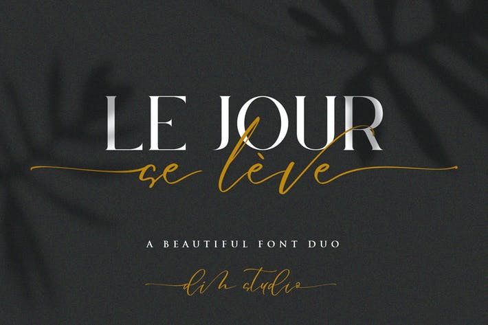 Thumbnail for Le Jour - Font Duo