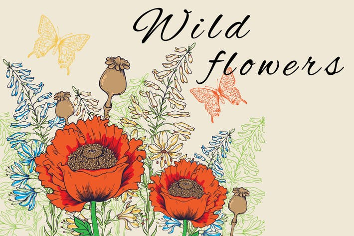 Thumbnail for Wild Flowers and Butterflies
