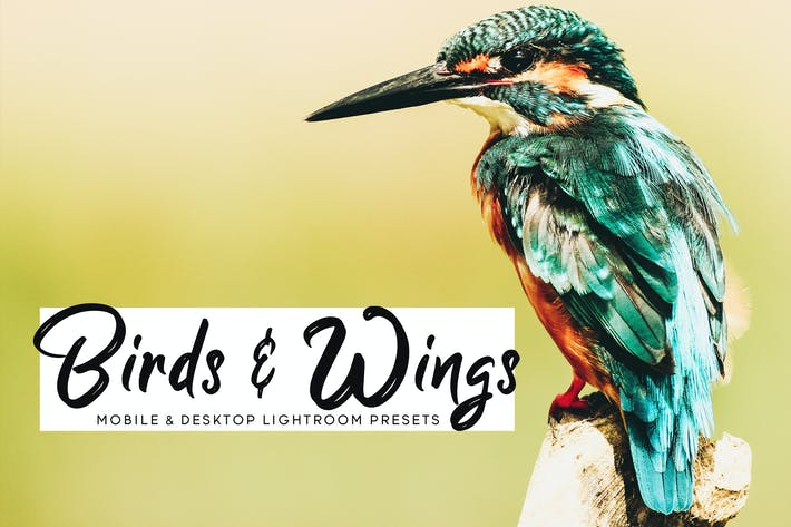 Cover Image For Birds & Wings Mobile & Desktop Lightroom Presets