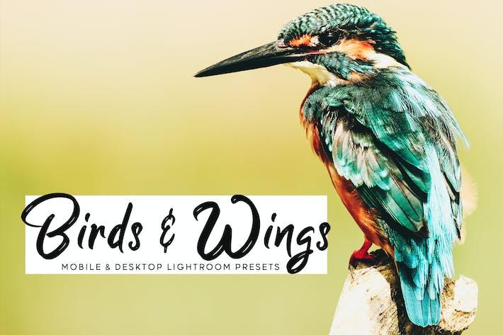Thumbnail for Birds & Wings - Ajustes preestablecidos de iluminación Móvil y de escritorio