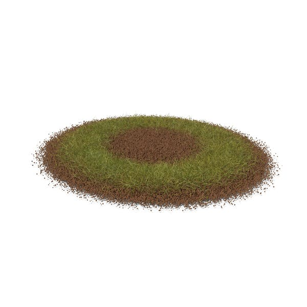 Grass & Dirt Short
