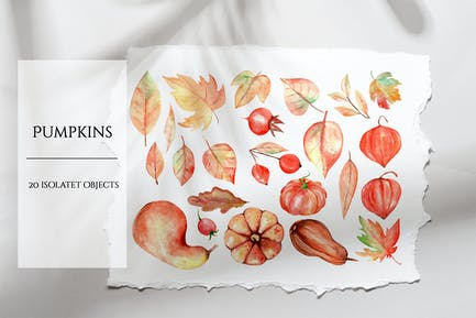Pumpkin Watercolor Set