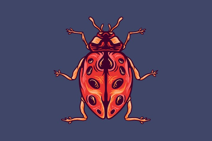 Beetle animal illustration