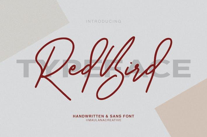 Thumbnail for Redbird Signature Font Free Sans