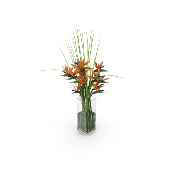 Birds of Paradise Entrance Exotic Flower Bouquet