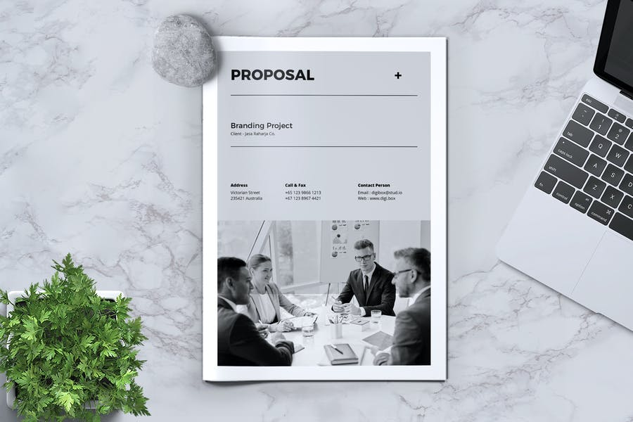 DIGIBOX Business Proposal