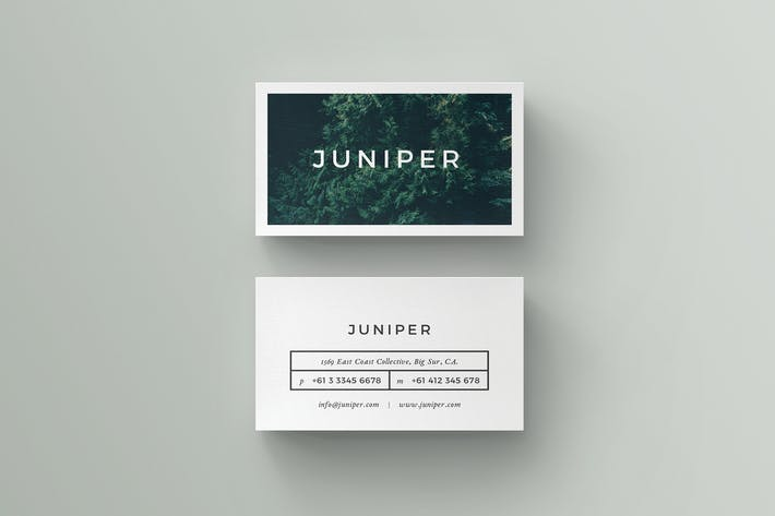 Thumbnail for J U N I P E R Business Card
