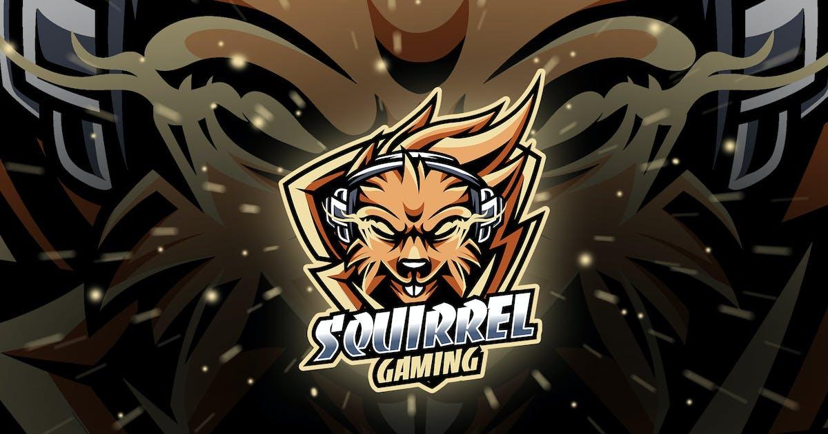 Download squirrel - Mascot & Esport Logo by aqrstudio