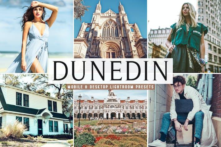 Thumbnail for Dunedin Mobile & Desktop Lightroom Presets